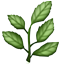:herb:
